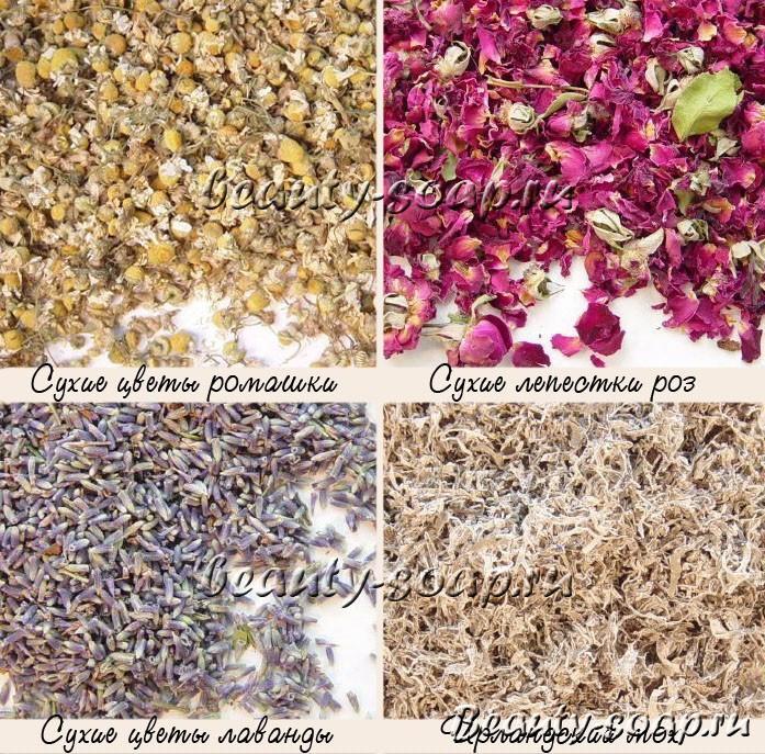 Сухоцветы в мыле: фото