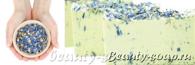 Сухоцвет василька в мыле